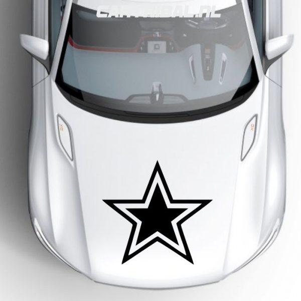 ster sticker model 19